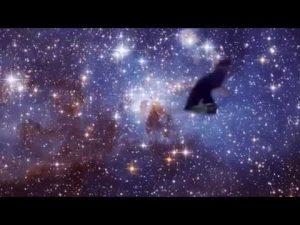 SKIT – Bradley Is A Shooting Star