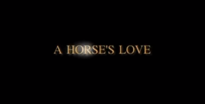 A HORSE'S LOVE – A Short Film by Aaron B.