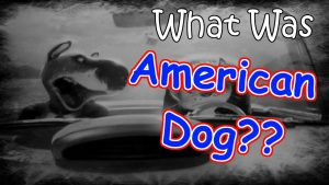 "What Was ""American Dog??"" – PARTLY LOST DISNEY MOVIE? – STUDIO95"