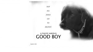 GOOD BOY (A Film By Aaron B.) EQUUS21