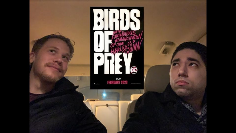 After The Movie: Birds of Prey Review